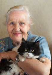Therapy for Pet Owners at Caring Companions
